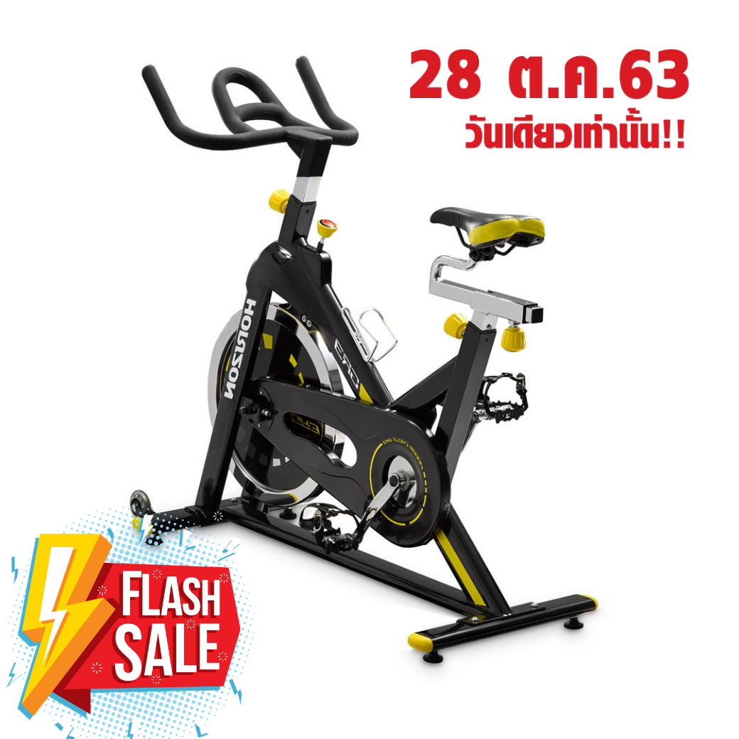 Horizon Spinning Bike GR3 + Console